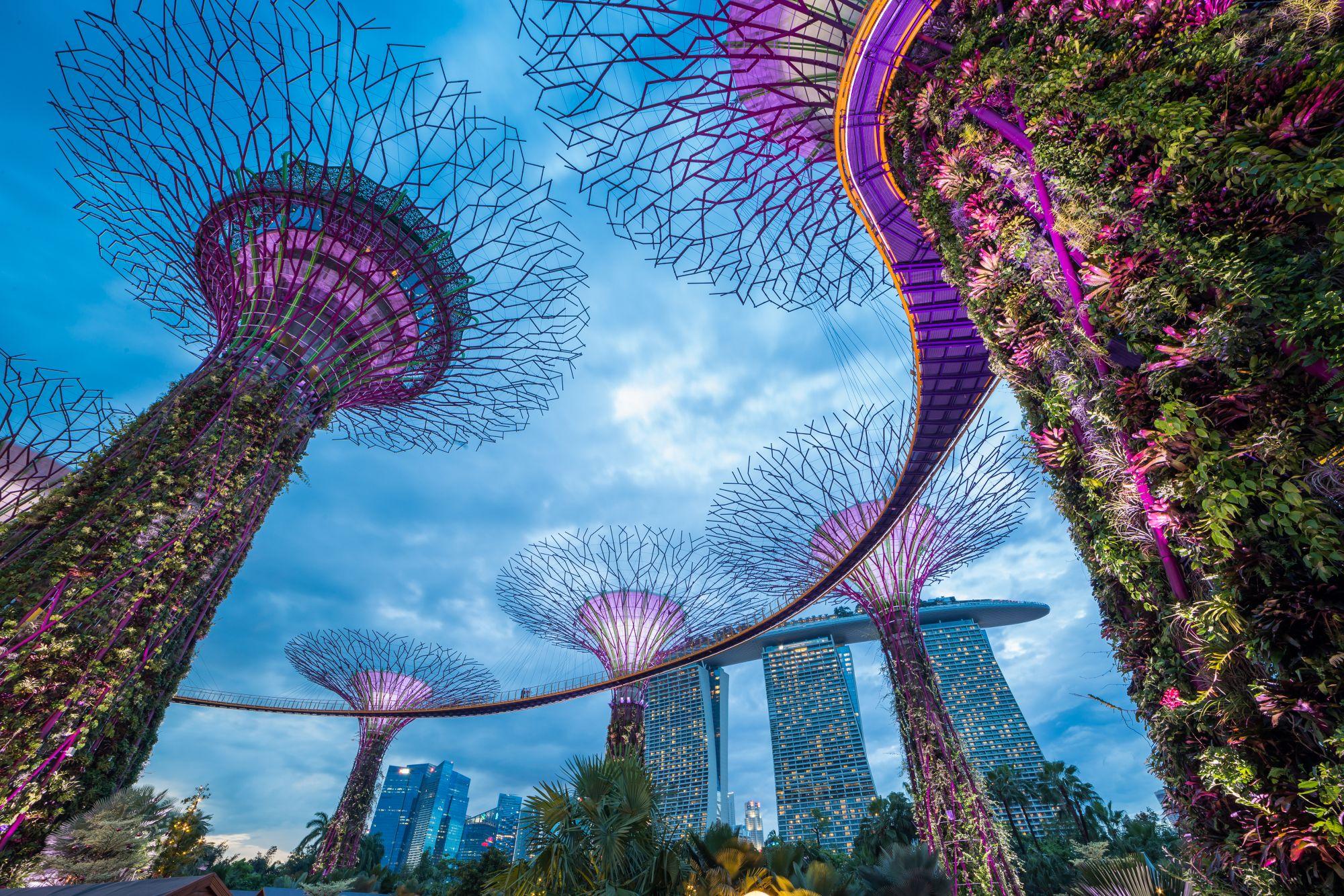 Singapur za 1598 zł w marcu!